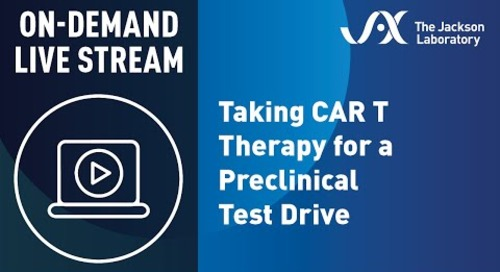 Taking CAR T Therapy for a Preclinical Test Drive