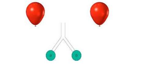 PAV+ Mechanics and Physiology - Module 6