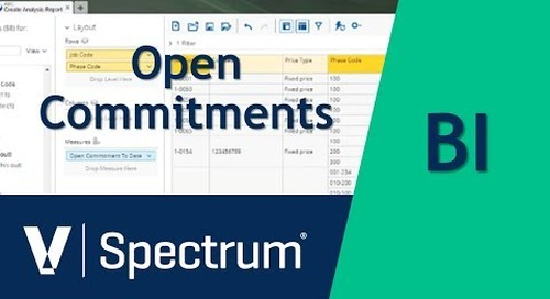 Spectrum BI Open Commitments