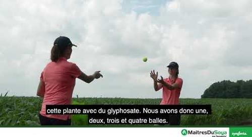 Résistance aux herbicides: Résistance non liée à la cible