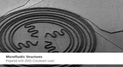 ZEISS Crossbeam: Your FIB-SEM for Fastest Nanotomography & Nanofabrication