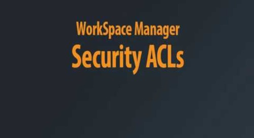WorkSpace Manager - Security Chaptered