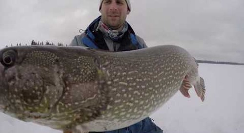 Ice Fishing for Giant  Pike on Tip-Ups - Manitoba Species Spotlight