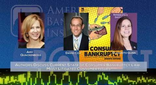 Current State of Consumer Bankruptcy Law, Most Litigated Consumer Issues