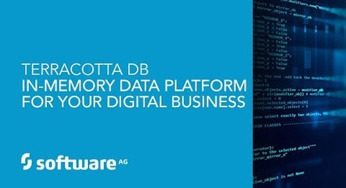 Demo: Terracotta DB – In-Memory Data Management for Digital Business