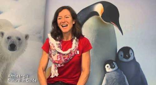 Meet Quark Expeditions Naturalist Guide Annie Inglis