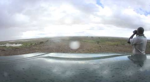 360 degree - Rainy day game drive in Amboseli