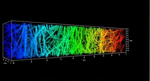 ZEISS LSM 880 with Airyscan: 3D imaging of collagen fiber network