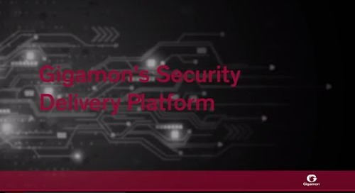 Gigamon's Security Delivery Platform