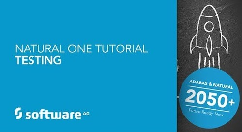 Natural ONE Tutorial - Testing