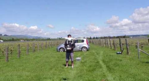 NDVI comparison drone survey with a Sentera NIR Sensor drone - DroneMate Agriculture
