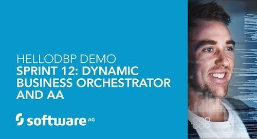 HelloDBP Demo – Sprint 12: Dynamic Business Orchestrator and AA
