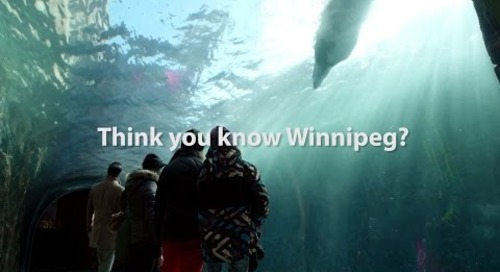 Think You Know Winter | Winnipeg