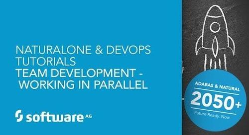 Team Development - Working in Parallel