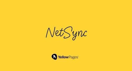 NetSync Premium: Propel your online presence