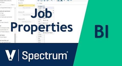 Spectrum BI Job Properties