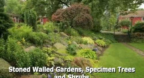 Willow Pond Farm