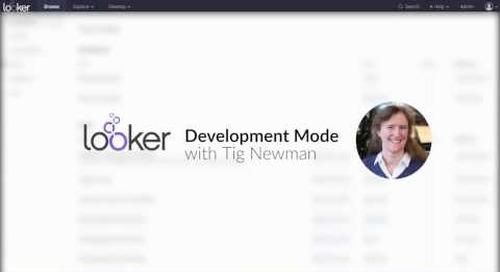 Look & Learn - Development Mode