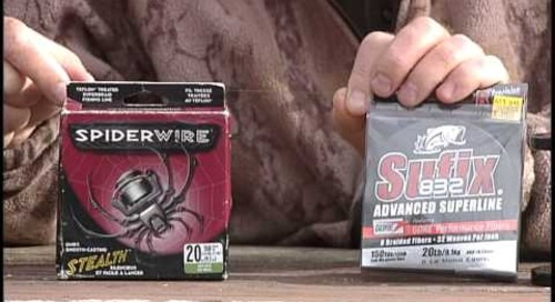 Fishing Line Review with Daryl Bauer