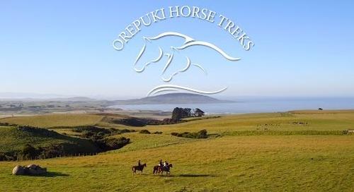 Welcome to Orepuki Horse Treks