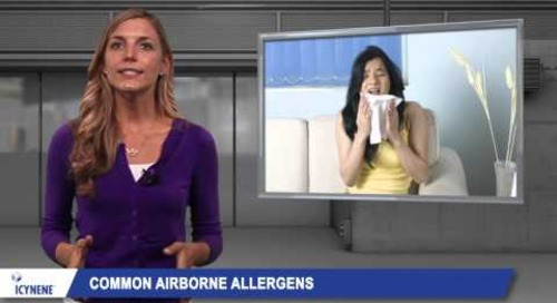 Spray Foam Insulation | Reduce Allergens with Icynene