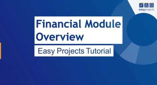Easy Projects Financial Module Overview