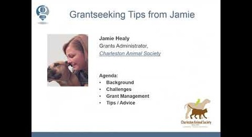 Tips from Grantseekers – Make Your Grant Process More Sustainable