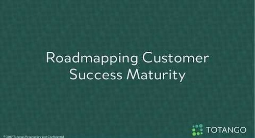 Roadmapping Customer Success Maturity