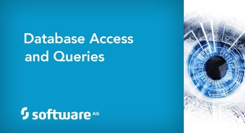 Database Access and Query