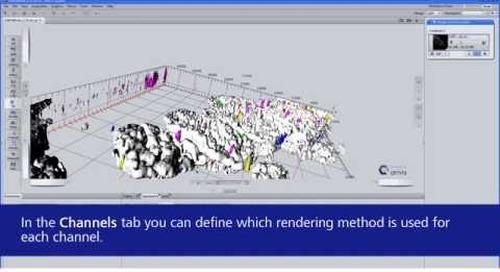 ZEISS ZEN 2.3: Efficient Rendering with the 3Dxl Module