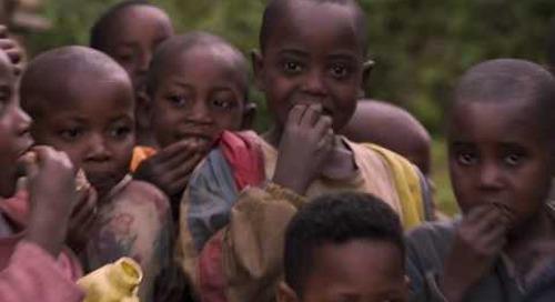 Destination Rwanda