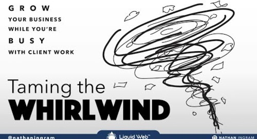 Taming the Whirlwind - Growing Your Business While You're Busy with Client Work