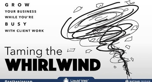 Webinar: Taming the Whirlwind - Growing Your Business While You're Busy with Client Work