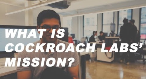 What is the Mission of Cockroach Labs? MAKE DATA EASY