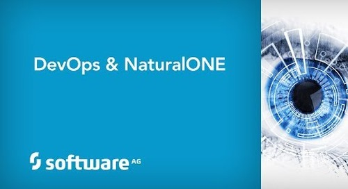 DevOps & NaturalONE