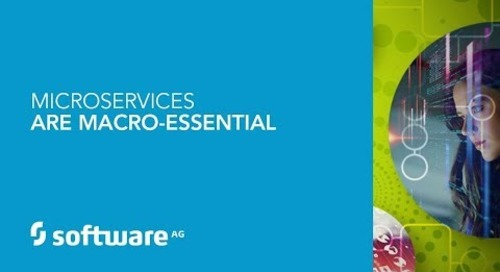 Microservices are Macro-Essential
