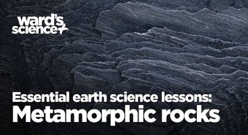 Essential activities for essential earth science lessons: Metamorphic rocks