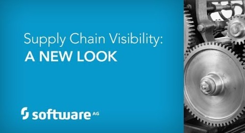 Supply Chain Visibility: A New Look