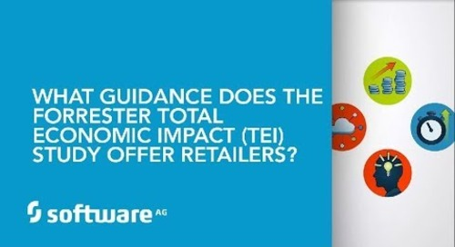 What guidance does the Forrester Total Economic Impact (TEI) Study offer Retailers?