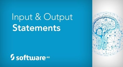 Input & Output Statements