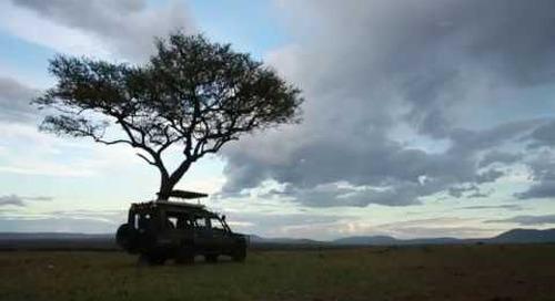 safari vehicle examples