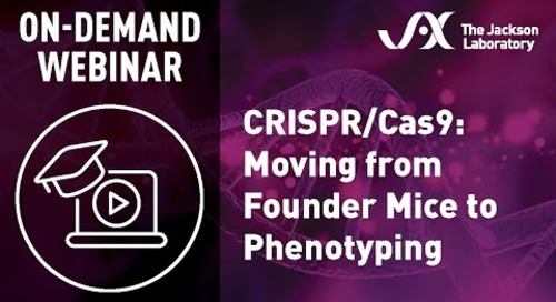 CRISPR/Cas9 - Moving from Founder Mice to Phenotyping