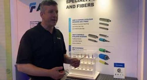 Sean talking sensing optical fiber for oil and gas at OTC 2019