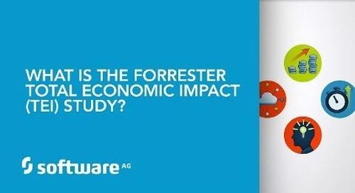 What is the Forrester Total Economic Impact (TEI) Study?