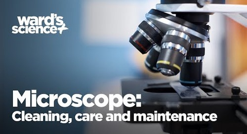 Microscope Cleaning, Care and Maintenance: Tips to Keep Your Scopes in Tip-Top Shape