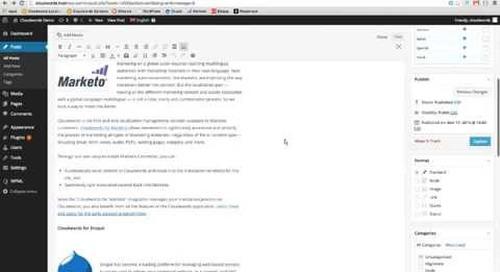 Cloudwords for WordPress demo