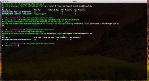 Autoscaler CLI Demo