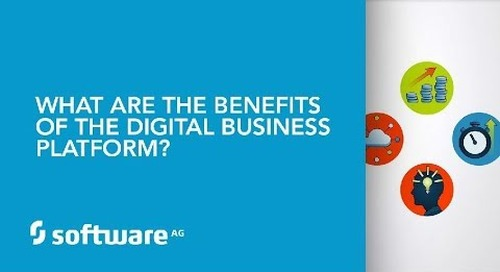 What are the benefits of the Digital Business Platform?
