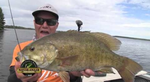Huge Smallmouth Bass Fishing in Manitoba - Manitoba Master Angler Minute