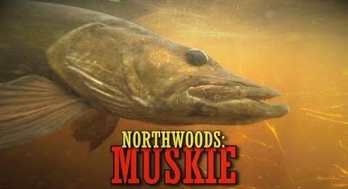 A Northwoods Wisconsin Musky Hunt